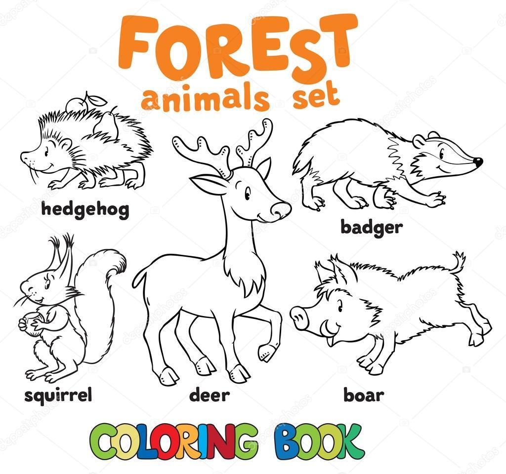 Imágenes Niños En Un Bosque Para Colorear Animales Del Bosque