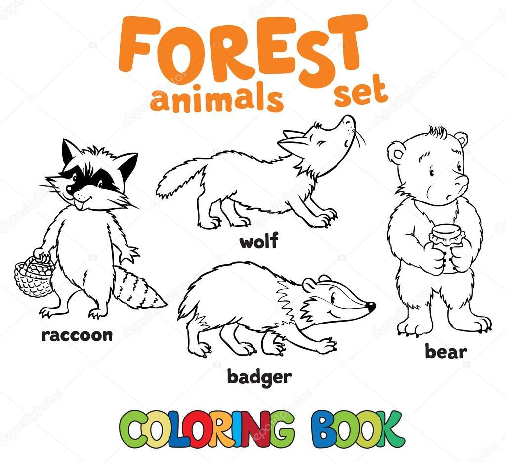Animales Del Bosque Para Colorear Libro Archivo Imágenes