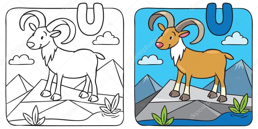 Bild lustige Urial Färbung. Alphabet U — Stockvektor © passengerz ...