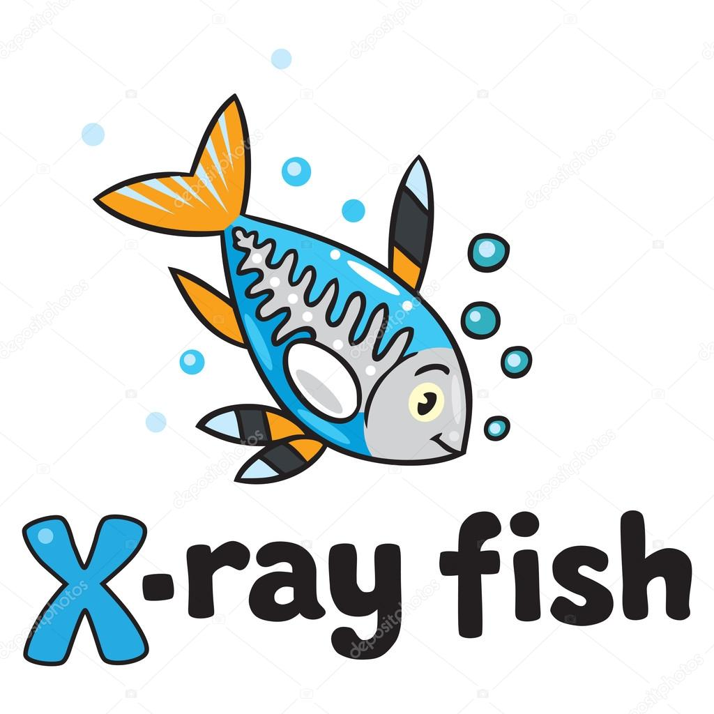 X ray fish for abc alphabet x stock vector passengerz for X ray fish