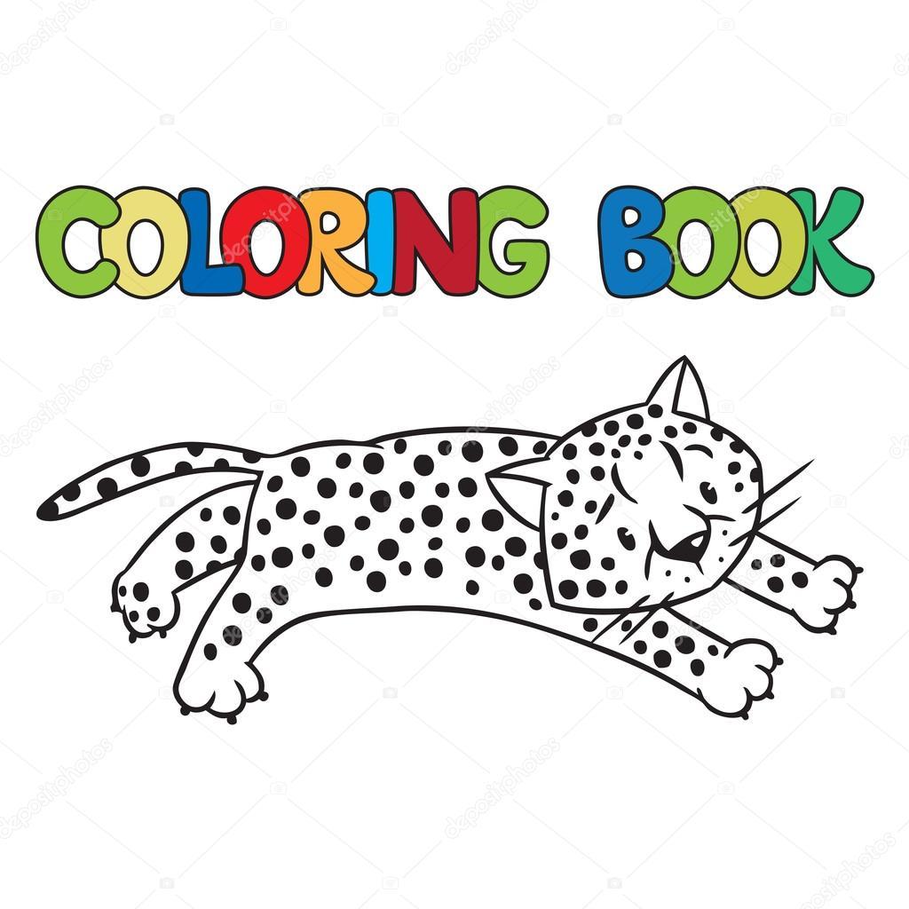 Libro de guepardo o jaguar para colorear — Archivo Imágenes ...