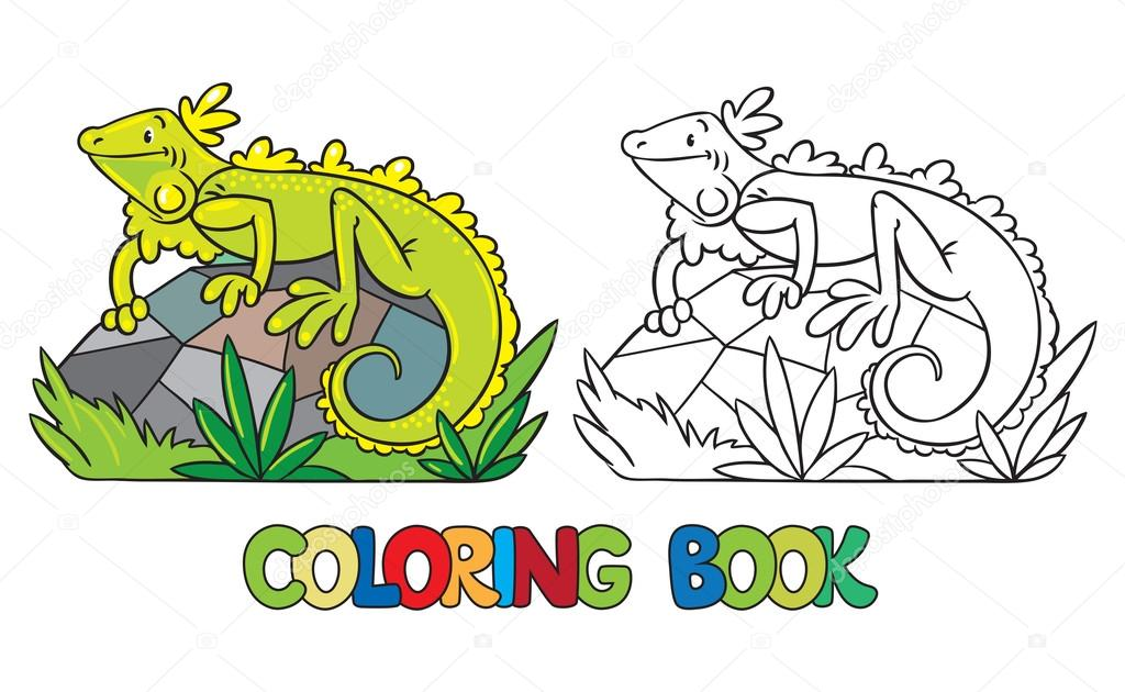 Libro de colorear de iguana pequeña — Archivo Imágenes Vectoriales ...