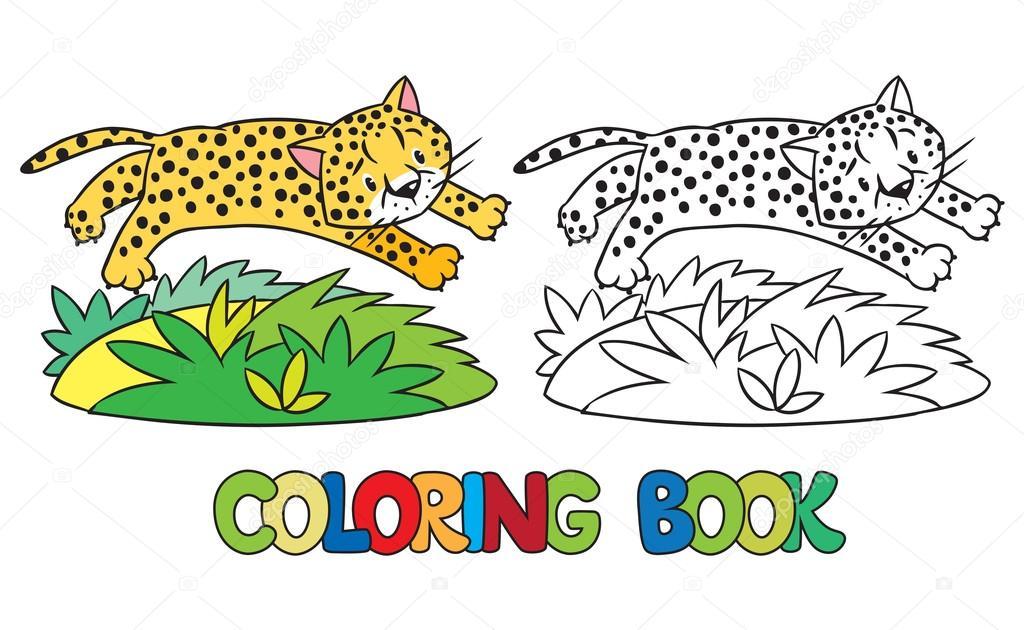 Fotos: jaguar para pintar | Libro de guepardo o jaguar para colorear ...