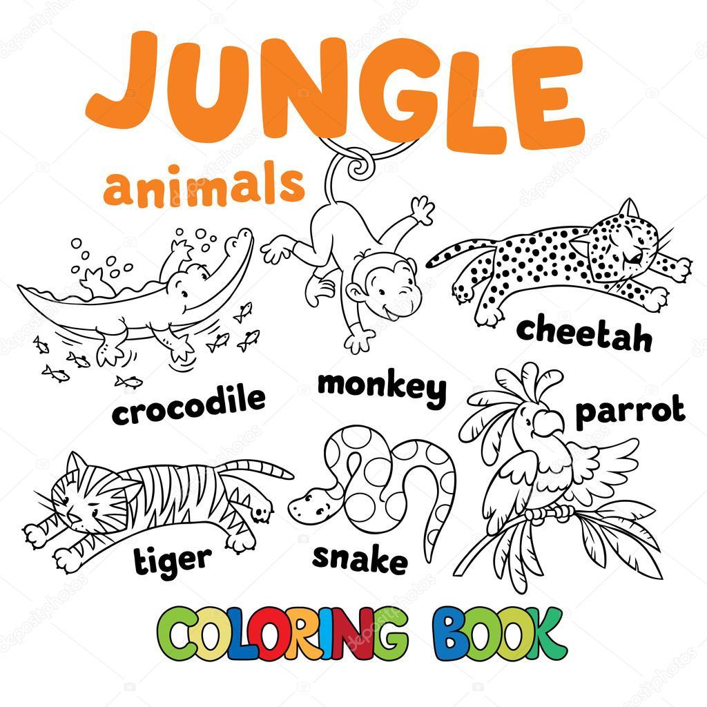 Dibujos animados animales de la selva para colorear vector libro ...