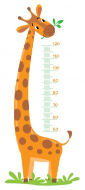 Cheerful funny giraffe height meter or meter wall or wall sticker from 50 to 120 centimeter. Childrens vector illustration clip art vector