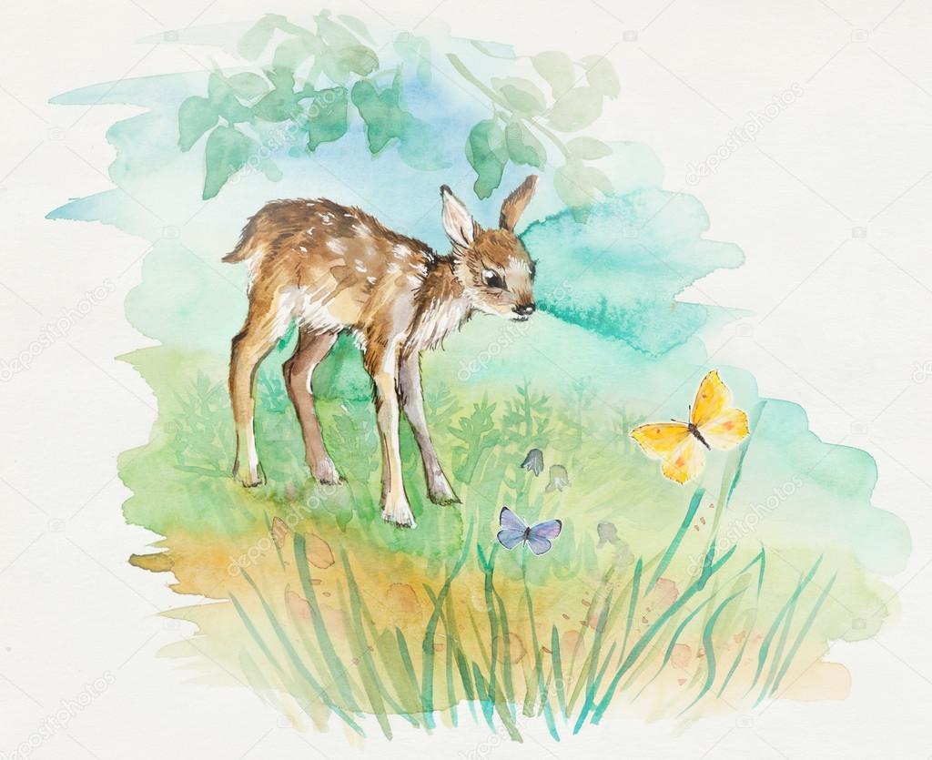 Reh Baby Mit Schmetterlingen Dekoration Mit Wildlife Szene