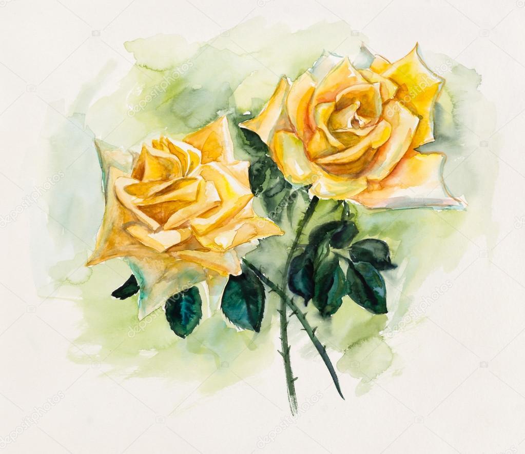 Dos Rosas Amarillas Patrón De Color De Rosa Dibujos Boda Fotos
