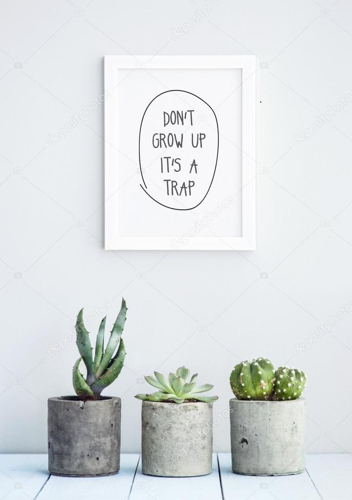 sakın büyüme - dont grow up 2015