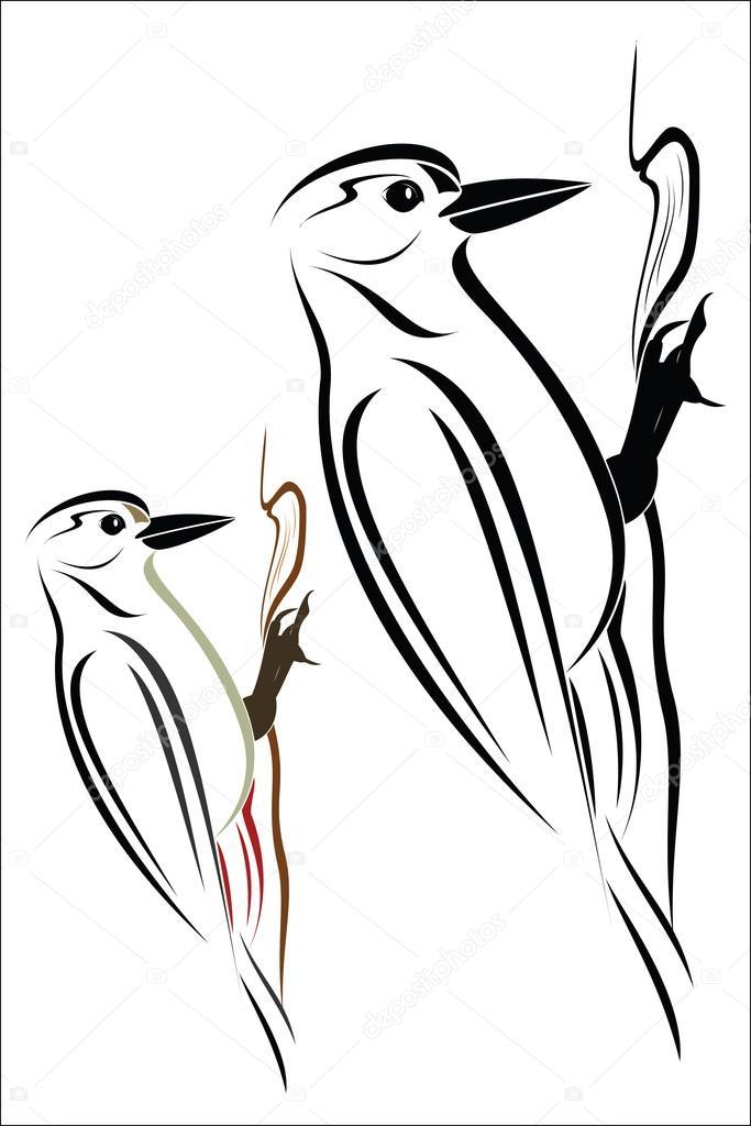 Vector Dibujo Pajaro Carpintero Pájaro Carpintero Vector De