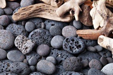 Pebble and shells