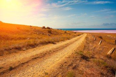 Dirt road in the desert