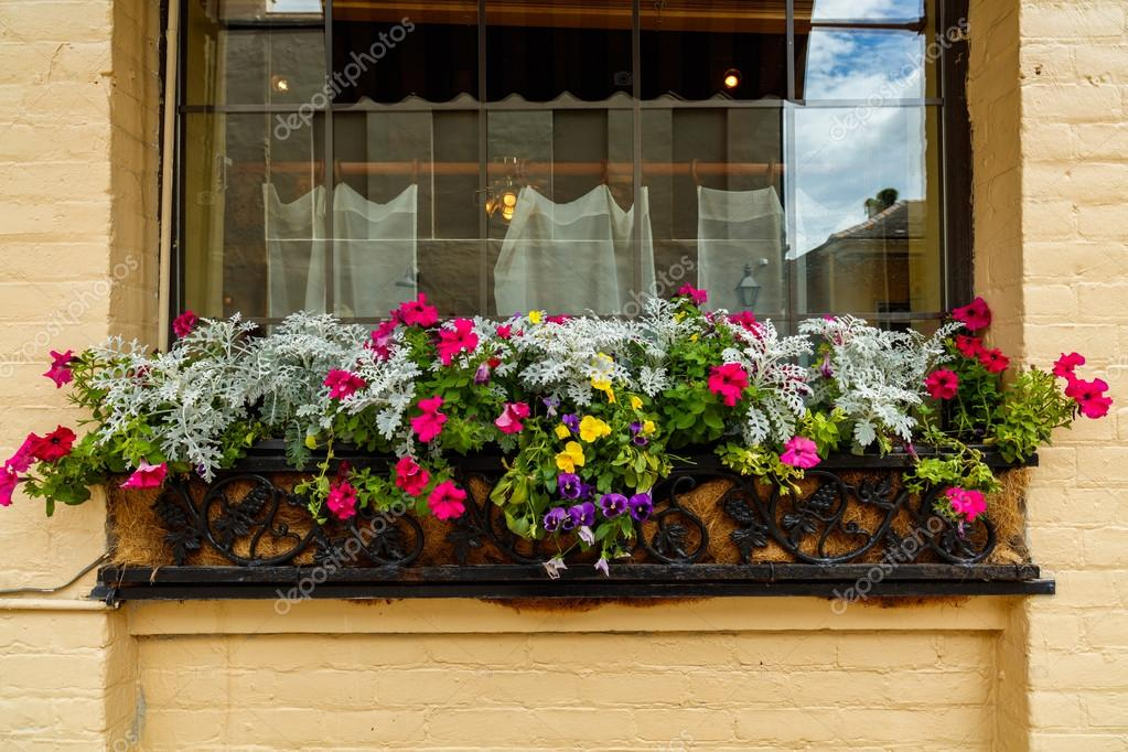 French quarter flowers stock photo fotoluminate 110690206 pretty flowers and plants outside a vintage french quarter building in new orleans louisiana photo by fotoluminate mightylinksfo