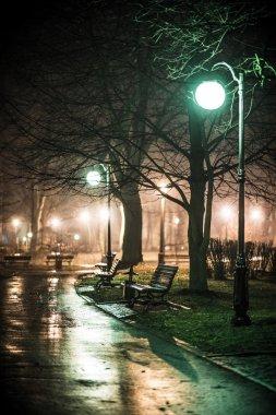 Spring Rain in the Park