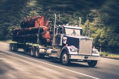 Speeding Logging Truck