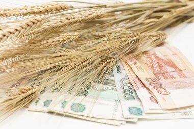 money rubles