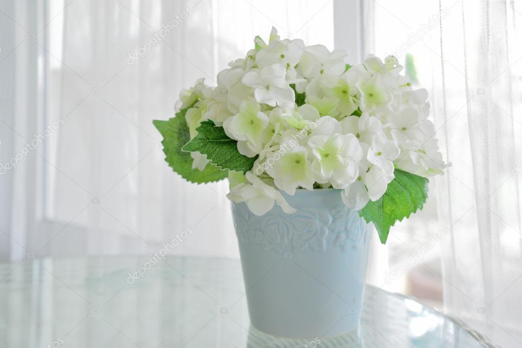 weiße Blume im Topf auf Tisch mit Fensterbank im Hintergrund ...