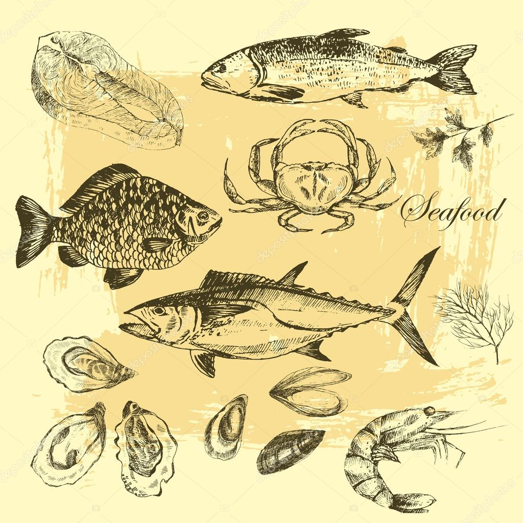 vector hand drawn seafood set - shrimp, crab, lobster, salmon, oysters, mussel, tuna, trout, carp. mediterranean cuisine sea food sketch