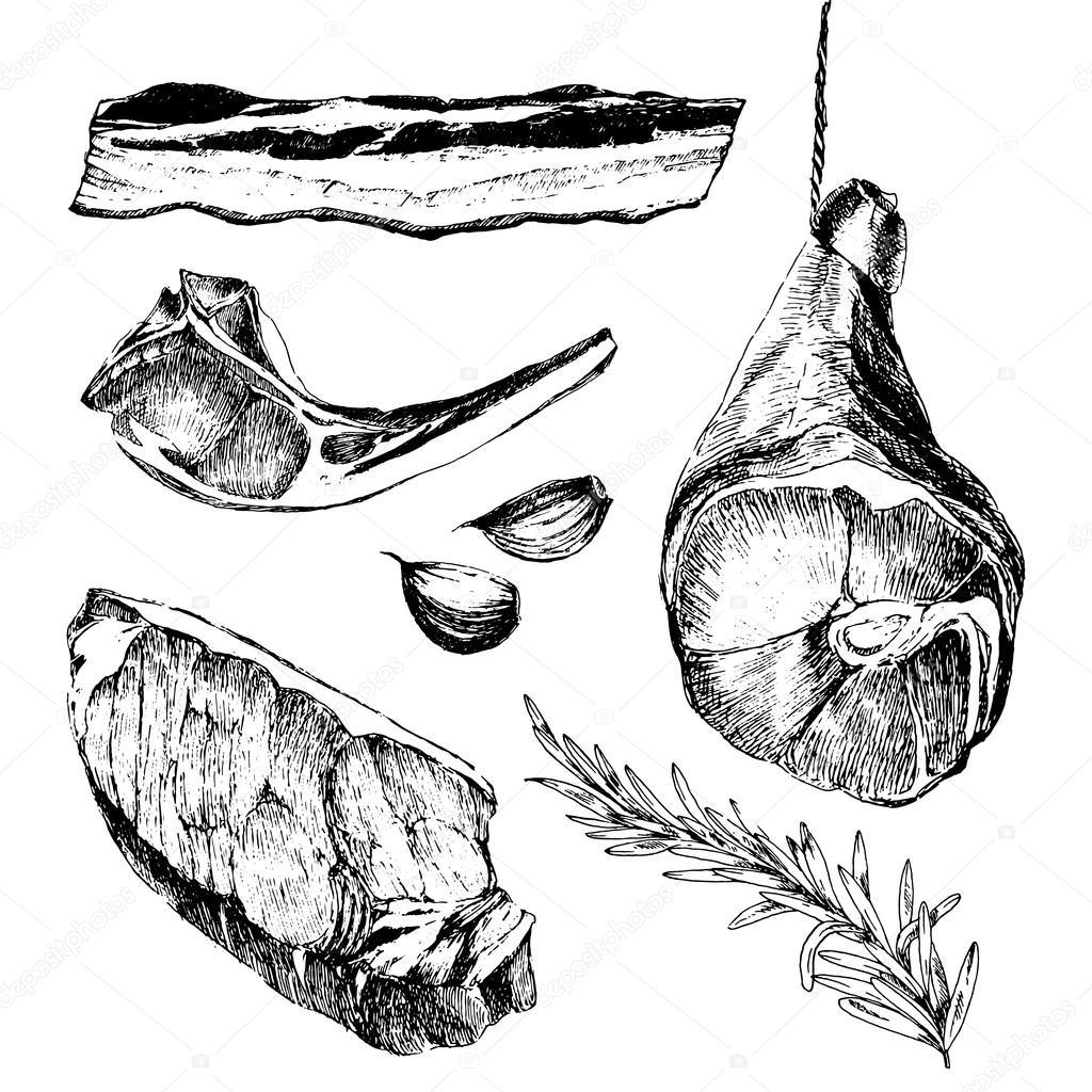 vector meat steak sketch drawing designer template. lamb rib, parma ...