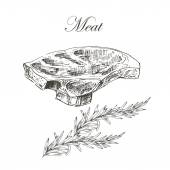 Fényképek vector steak meat hand drawing with pepper and rosemary. detailed ink food illustration