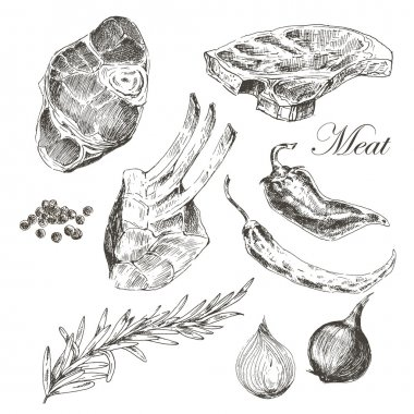 vector steak meat hand drawing with pepper and rosemary. detailed ink food illustration