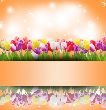 vintage tulip flowers background with stamp frame.