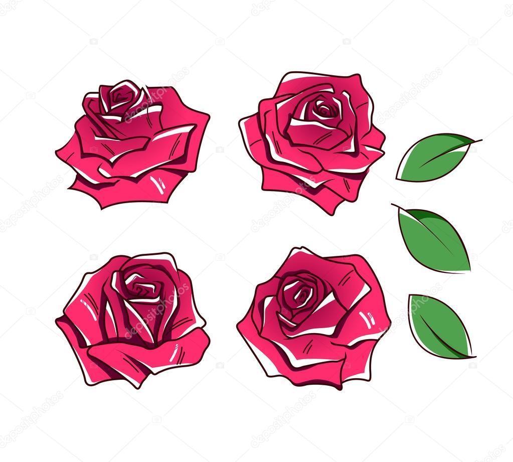 White Roses, Varieties, Types Of White Rose