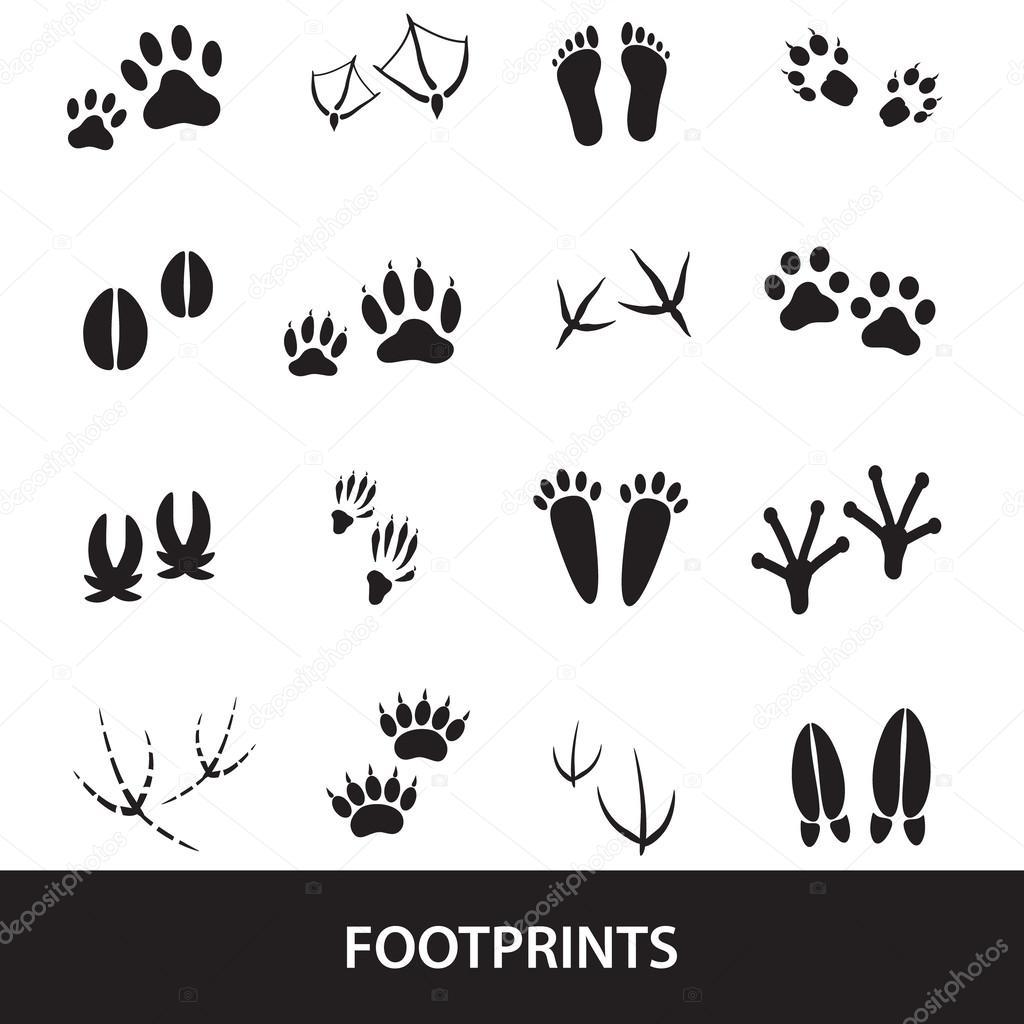 basic animal footprints set eps10
