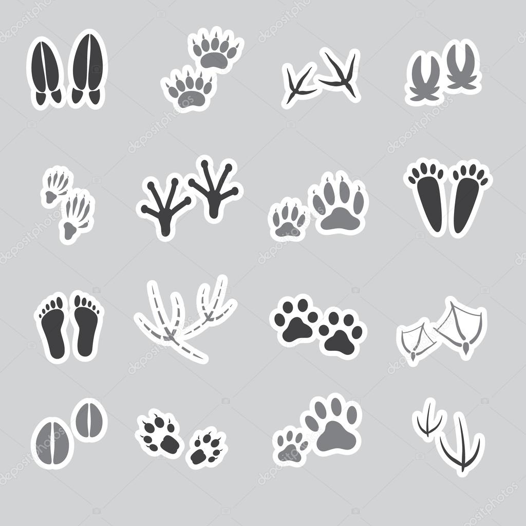 Set with africa animals black white stock vector 169 insima - Alapvet Llati L Bnyomok Matric K Meghat Rozott Eps10 Stock Illusztr Ci K