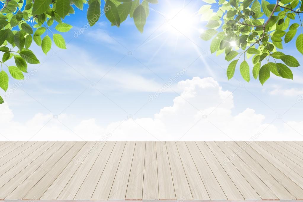 Hojas de color verde primavera fresco cielo bule con piso de madera ...