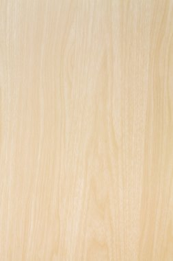 High resolution blonde wood texture
