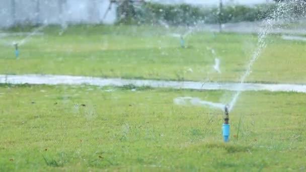 Water sprinkler in garden field, green grass background.