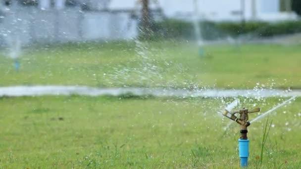 Sprinkler vizet a kerti mezőben zöld fű háttér.
