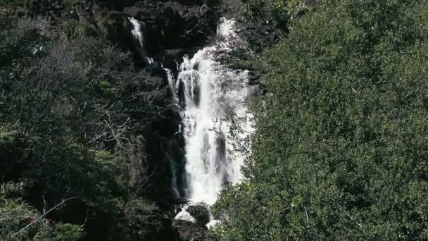 1080p, vodopád na hawaii