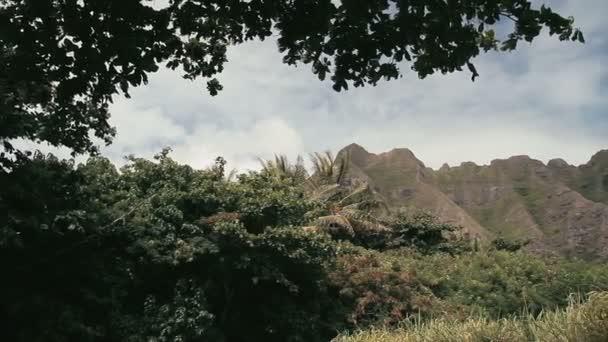 1080p, krajiny hawaii maui, oahu, velký ostrov a kauai
