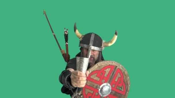 Portrét impozantního prostého válečníka na zeleném pozadí, zvedá stříbrný roh s medovinou a nápoji, vino. Starší muž v helmě s rohy a dřevěným štítem