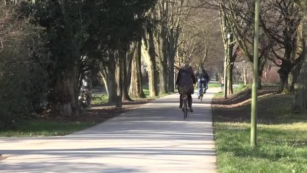 Jogging trať v podzimním parku, Cyklisté jezdit na betonové cestě mezi stromy bez listí