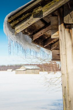 Icicles Hanging On An Old Barn House Roof