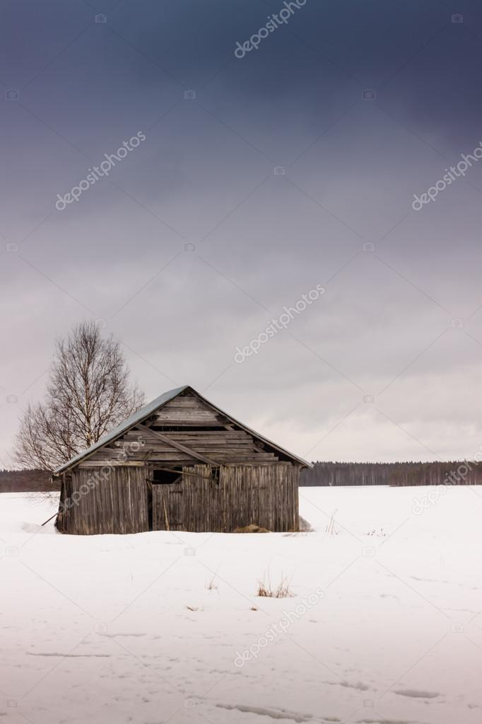 Barn And A Birch Tree