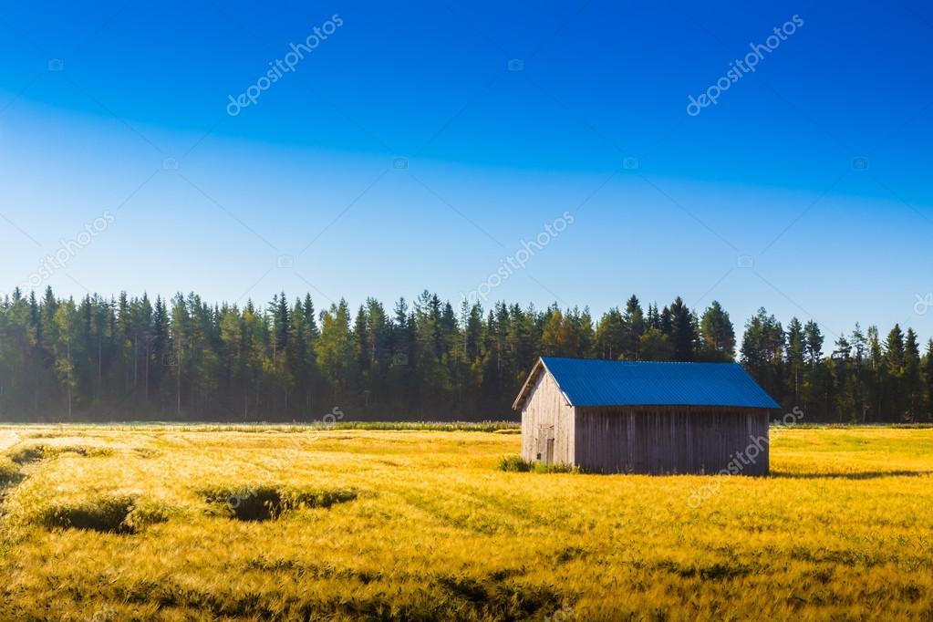 Barn In The Morning Sun