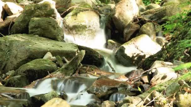 patak Időközű 4k