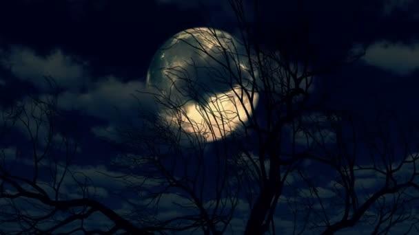 Moon Felkelési átmenő felhők és fa 4k