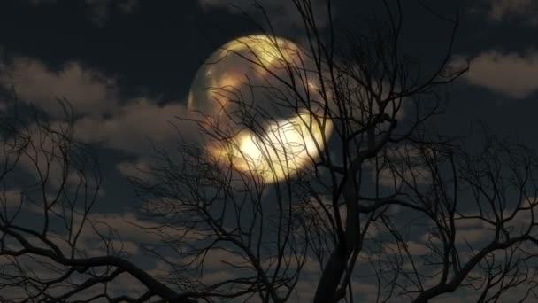 Měsíc vychází skrze mraky a strom 4k
