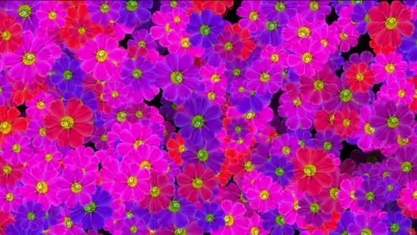 flowers background abstract texture