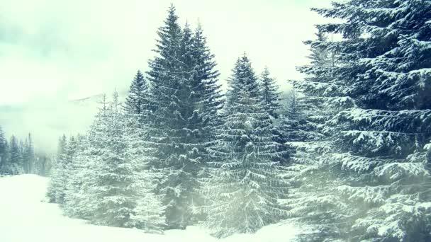 Schneefall auf Bäumen. Winter in Bergen. Nahtlose