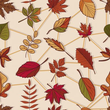 Pattern of autumn leaves.