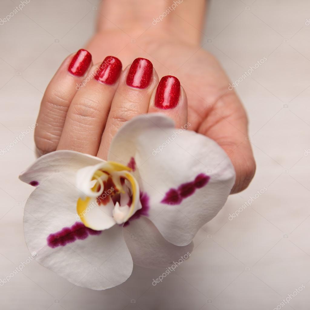Piękna Kobieta Paznokcie Z Piękne świąteczne Do Manicure Zdjęcie