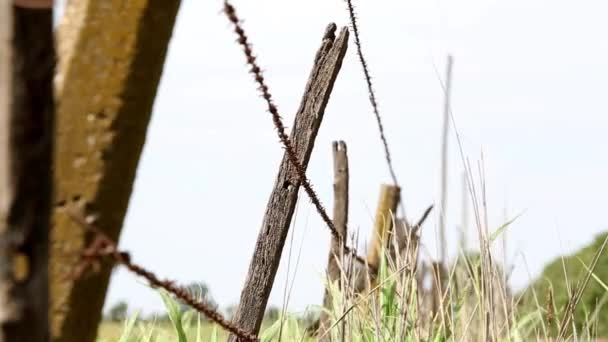 Detail of wire fence in the countryside.