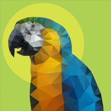 Parrot polygon Vector