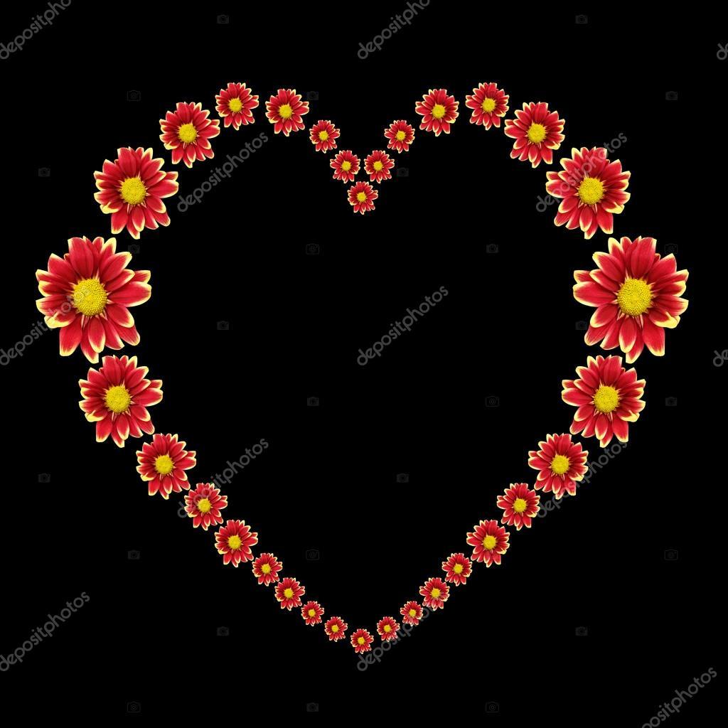 Magnifique Coeur De Fleur Rouge Isole Sur Fond Noir Enregistre Avec