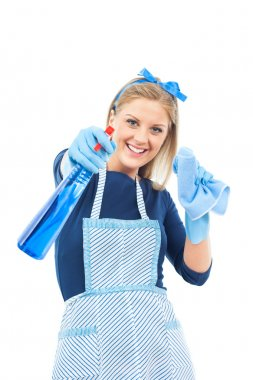 Housewife with spray for glass or windows